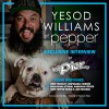 Interview: Yesod Williams of Pepper