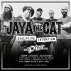 Interview: Jaya The Cat