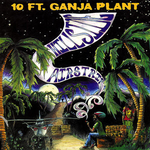 10ft.-Ganja-Plant-Front-Cover