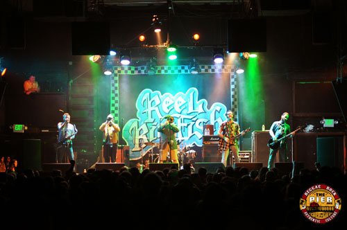 Reelbigfish_Top